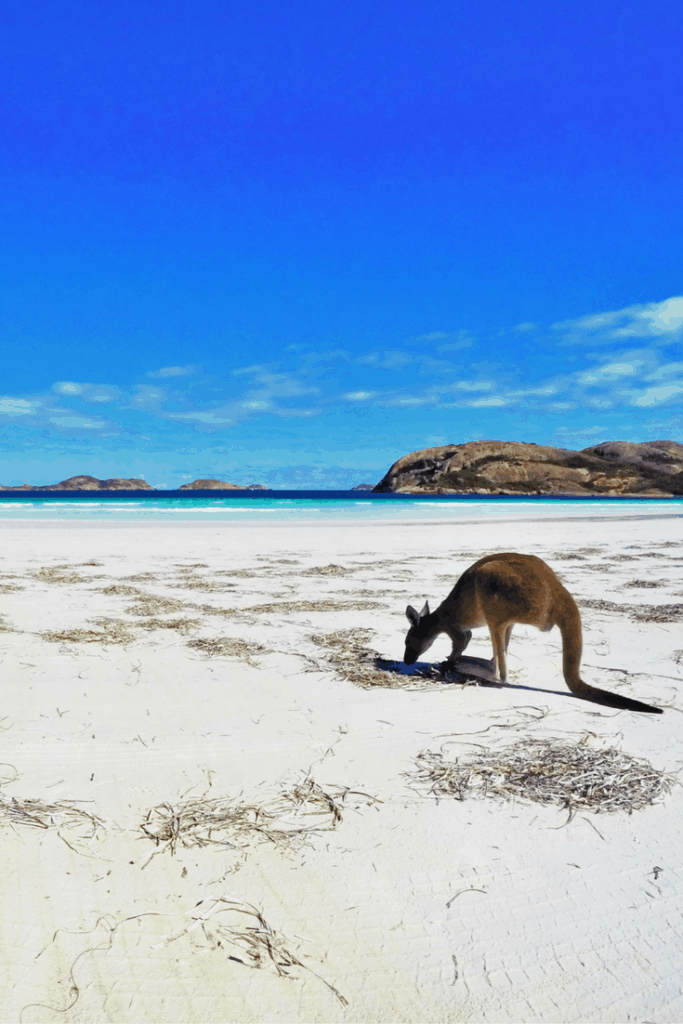100 Experiences in Australia; Lucky Bay