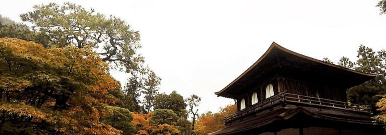 9 Tips to make your Trip to Japan more Enjoyable