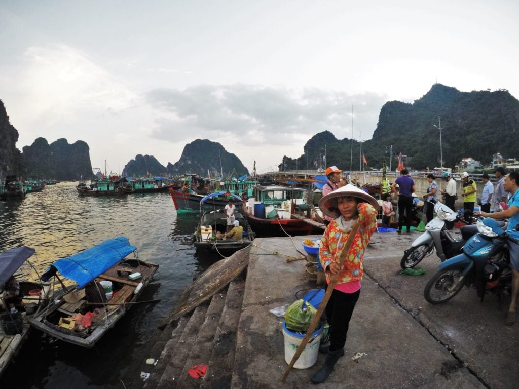 Halong Bay Backpacking Vietnam | Vietnam 3 week itinerary | 2 week trip to Vietnam | Hanoi to ho chi minh itinerary | vietnam in 3 weeks | vietnam itinerary 3 weeks | Vietnam trip planner | where to stay in vietnam | getting around vietnam | travelling around vietnam | planning a trip to vietnam | vietnam visa | visa vietnam |how to get your visa for vietnam | cost of travel in vietnam | travelling through vietnam | best way to see vietnam | backpacking southeast asia | vietnam itinerary | must see in vietnam | best vietnam itinerary | how to travel in vietnam | vietnam holidays