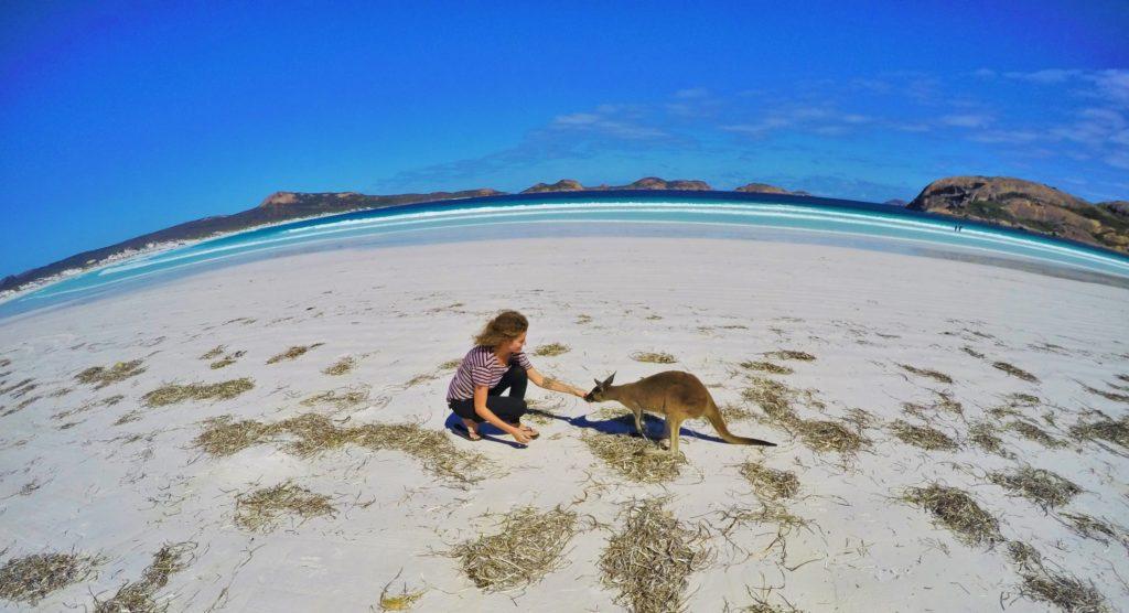 Lucky Bay Australia Kangaroos australia on a budget  | best destinations in australia |  amazing places in Australia