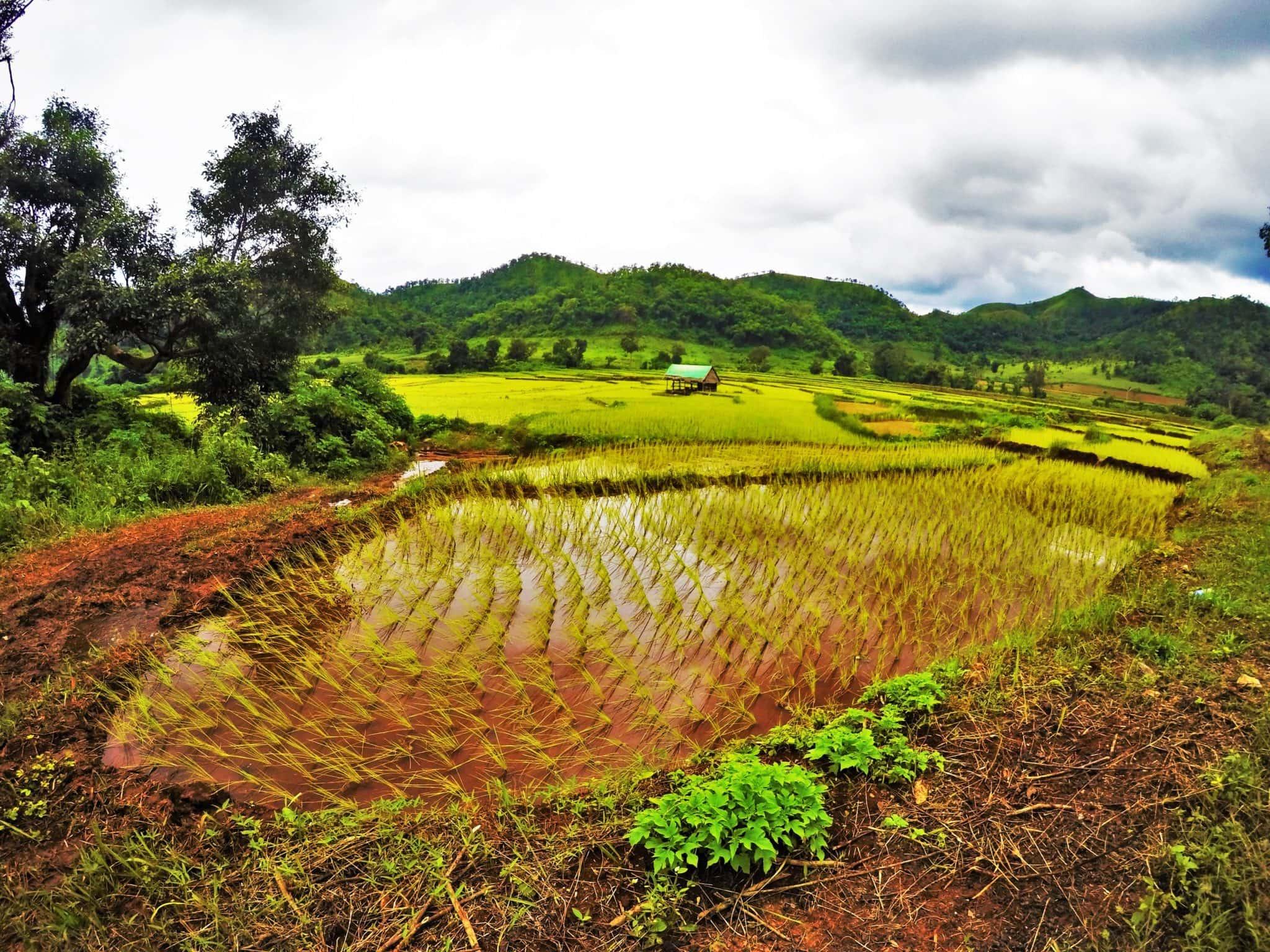 Should I Travel To Myanmar