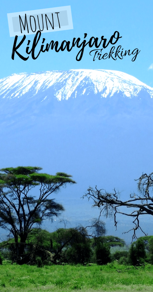 8 Reasons Why Mount Kilimanjaro Trekking Should Be On Your Bucket List - Tanzania Adventure - Bucket list - Travel Tanzania