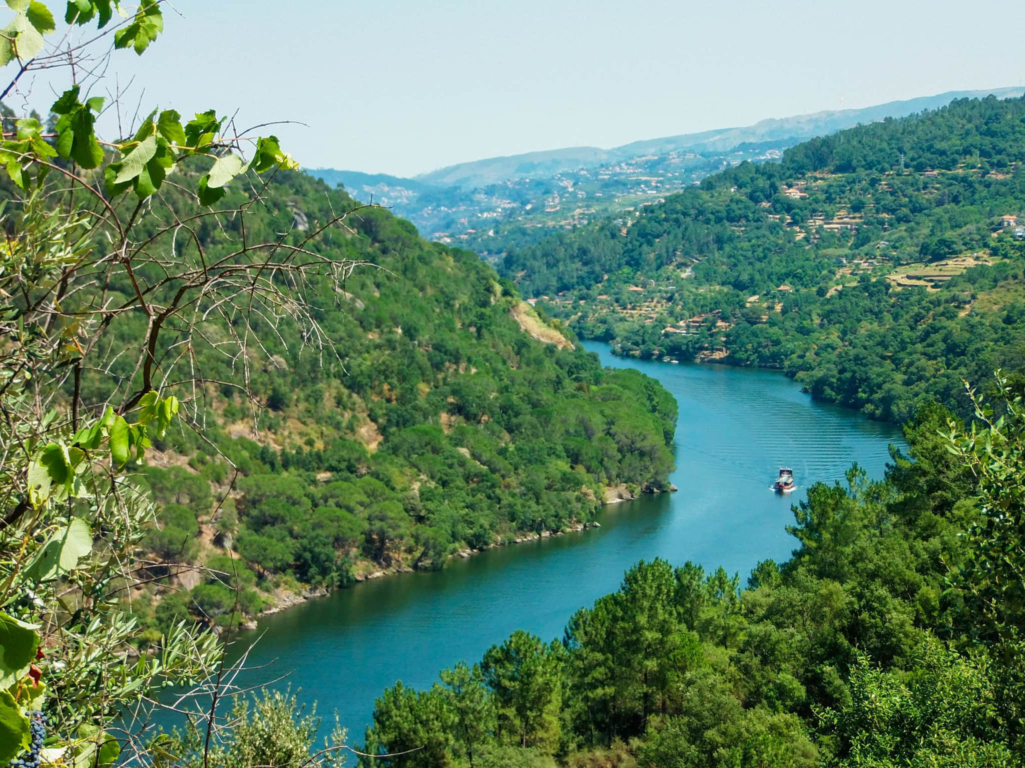 You Must Add Douro Valley To Your Portugal RoadTrip Itinerary A - Portugal vegetation map