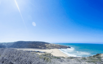 Portugal Surf Camp: Learning How To Surf in Ericeira Despite My Fears