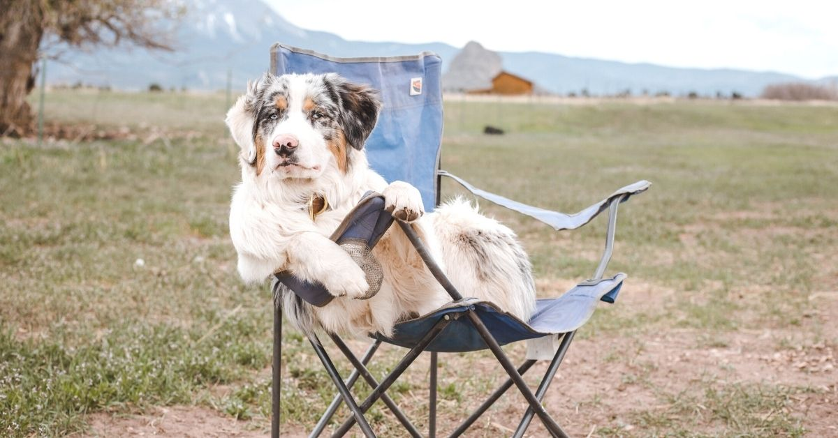 Backpacking chair lightweight