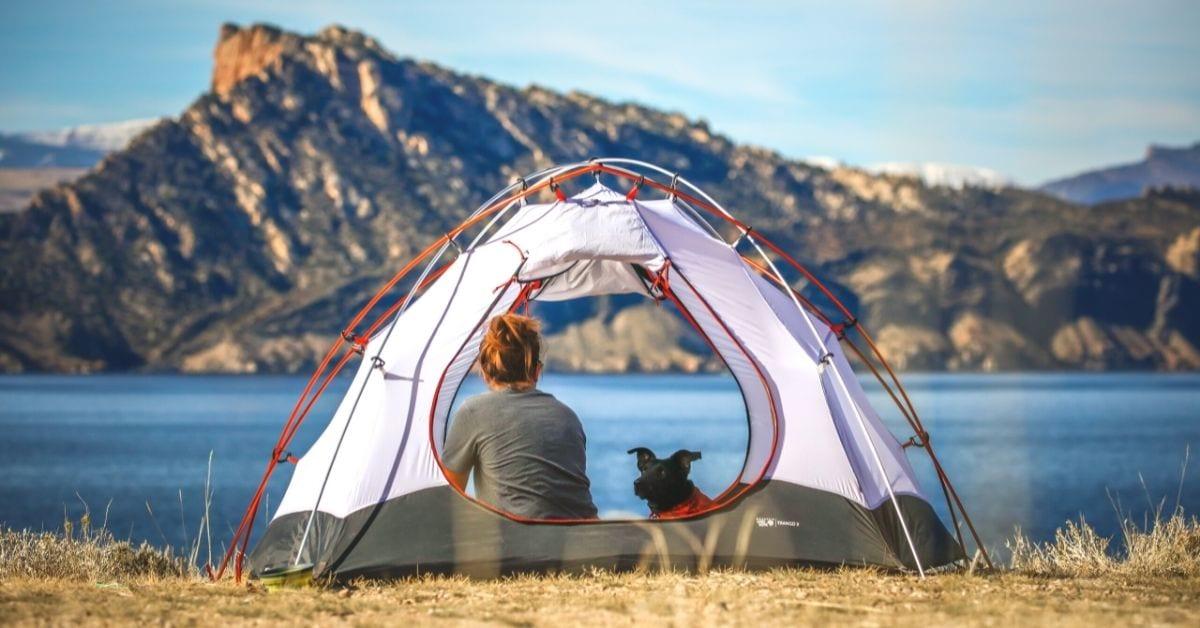 Best tent fan